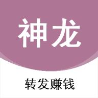 神龙网app