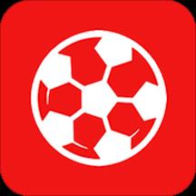 帮你找球料app