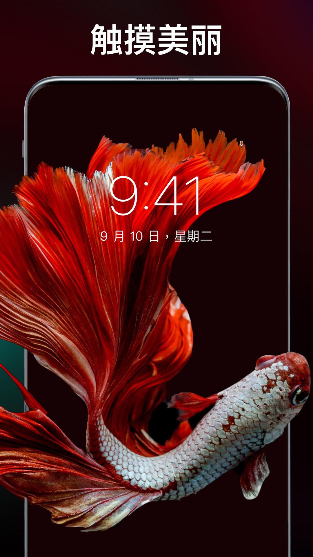 主题刘海壁纸app图2