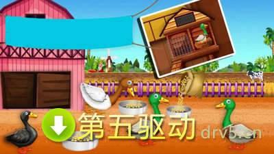 鸭农场养殖图3
