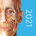 2021人体解剖学图谱