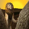 野生狮子生存模拟器