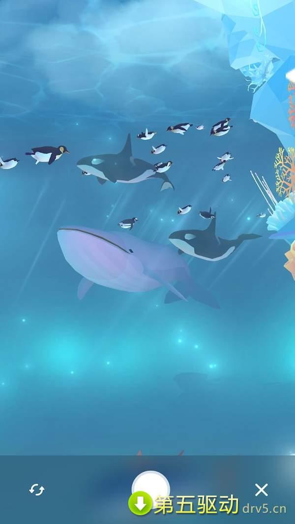 深海水族馆极地破解版图2