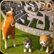 神奇宠物迷宫模拟器