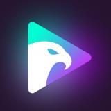老鹰短视频抖音短视频
