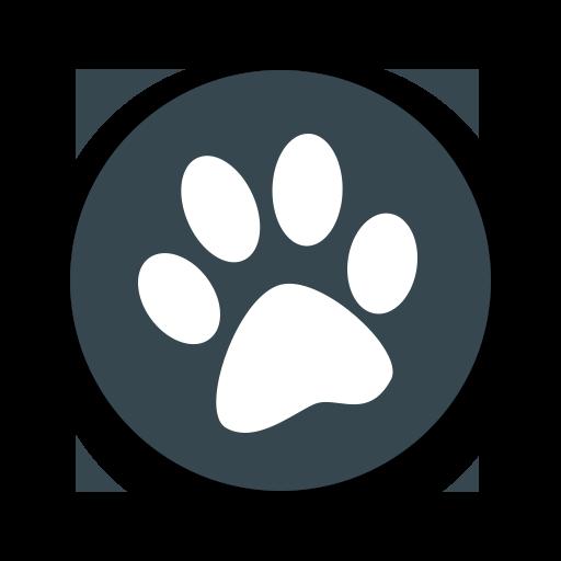 兽音译者app