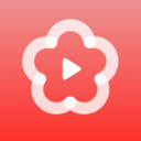 梅花视频app