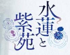 水莲与紫苑krkr
