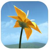 flower花