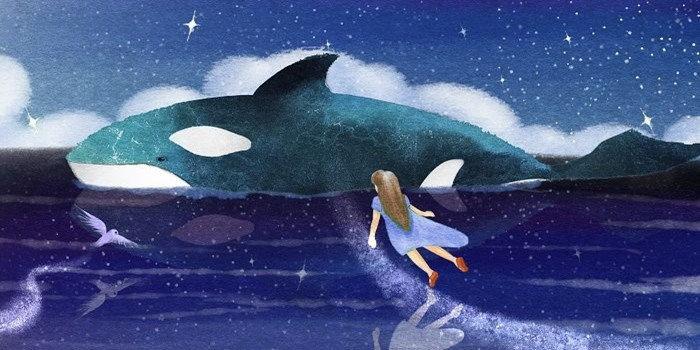全民养鲸鱼