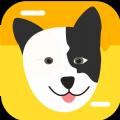猫狗翻译神器安卓版